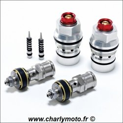 Kit pistons K-TECH SSRK BMW S1000RR 09-14 (Sachs)