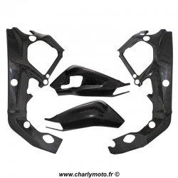 Pack protections de cadre et bras oscillant Carbone BMW S1000RR 09-11