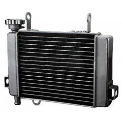Radiateur HONDA CBR 125 04-10 (EAU)