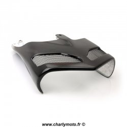 Protection thermique SPARK DUCATI 749 03-06