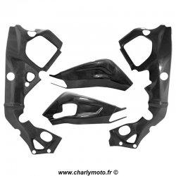 Pack protections de cadre et bras oscillant Carbone BMW S1000RR 15-18