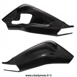 Protections de bras oscillant Carbone BMW S1000RR - HP4 09-18