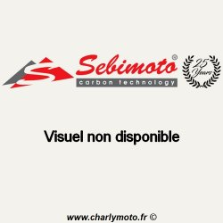 Protection d'allumage SEBIMOTO SUZUKI GSX-R 600 01-03 (Carbone)